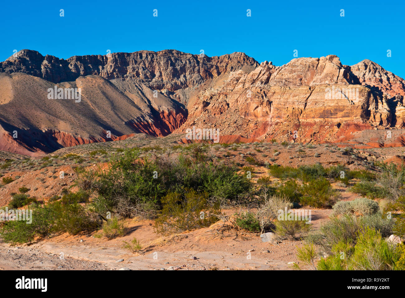 USA, Nevada. Mesquite. Gold Butte National Monument - Stock Image
