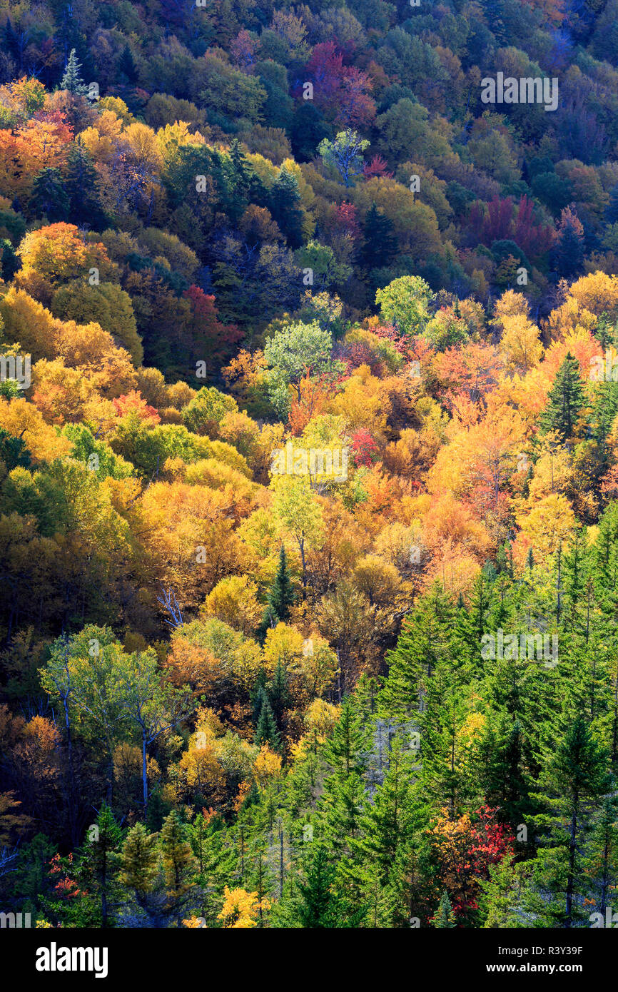 Fall foliage on Mount Madison in New Hampshire's White Mountain National Forest. View from Dome Rock. Stock Photo