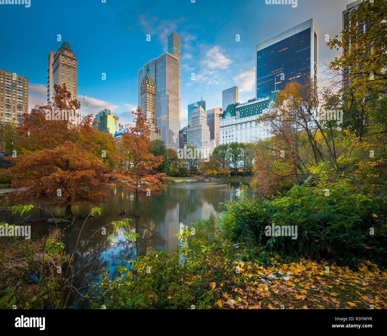 The Pond and Hallett Nature Sanctuary occupy the low-lying southeast corner of New York City's Central Park, at the corner of Grand Army Plaza, across - Stock Image