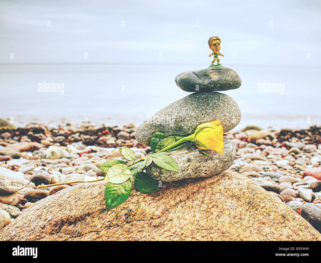 Fallen yellow rose. Meditation at stack of rounded stones on the beach. - Stock Image