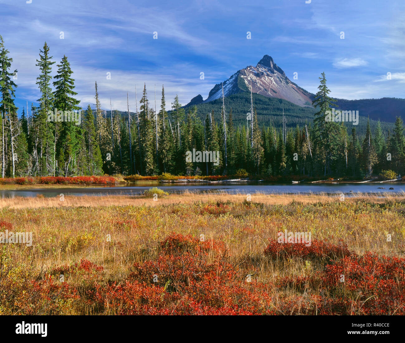 USA, Oregon, Willamette National Forest, Mount Washington rises above conifer forest, small lake and autumn-colored huckleberry and willows. - Stock Image