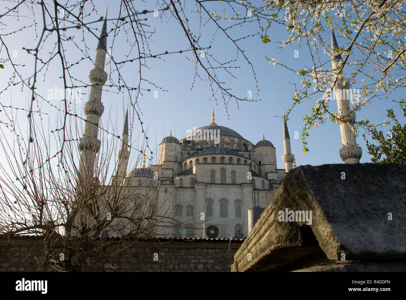 blue mosque in istanbul,turkey - Stock Image