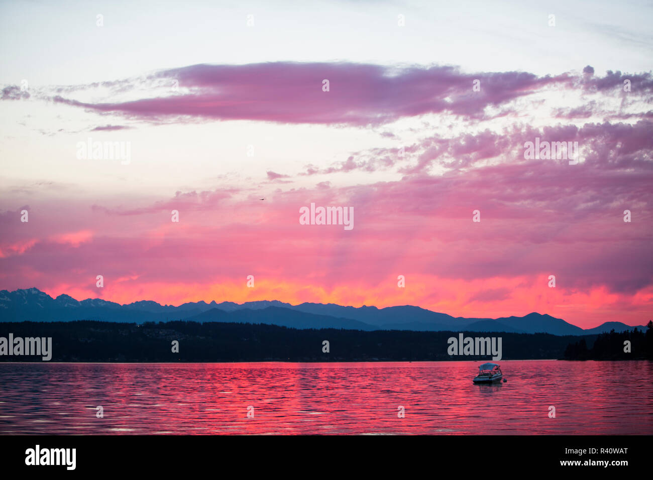 Tracyton, Washington State. Magenta sunset rains color over a boat on the bay and the Olympic Mountains - Stock Image
