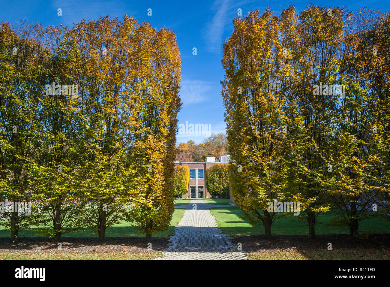 Riggio Stock Photos & Riggio Stock Images - Alamy