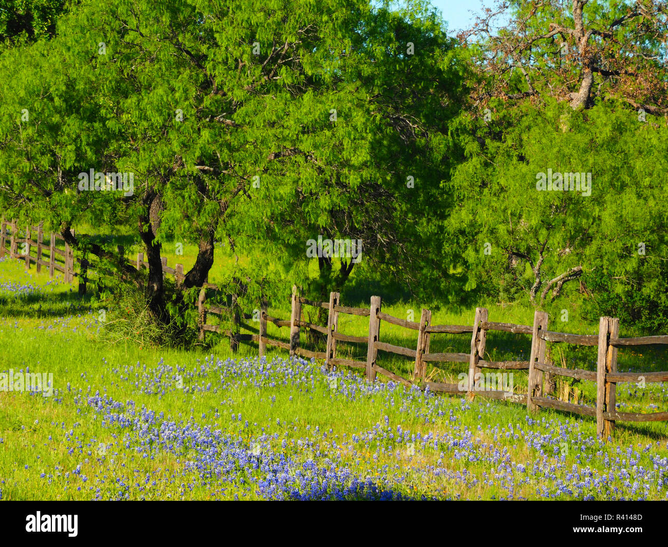 Highway 29 Stock Photos & Highway 29 Stock Images - Alamy
