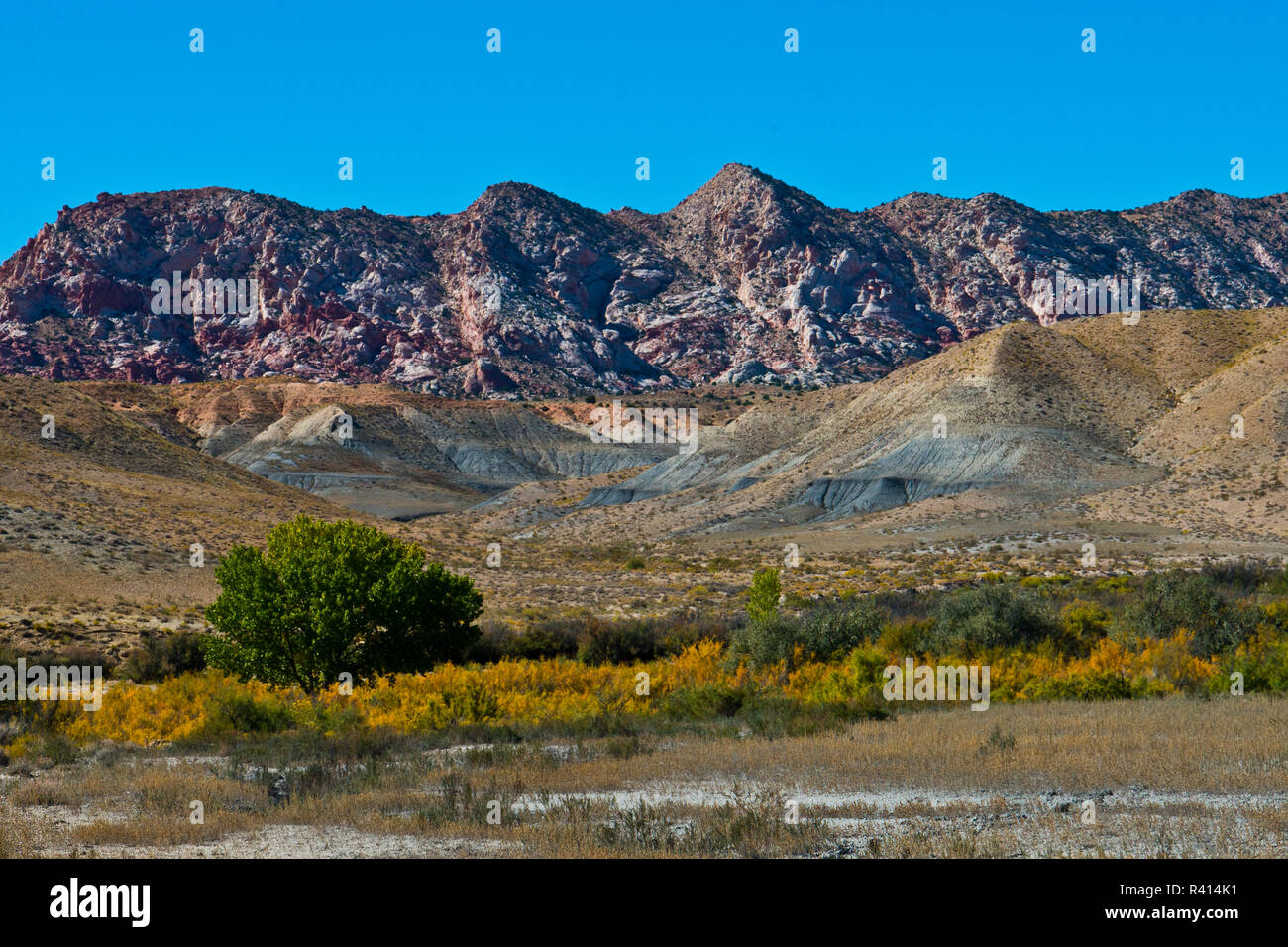 USA, Utah. Big Water, Spectacular views from Cottonwood Canyon Road - Stock Image