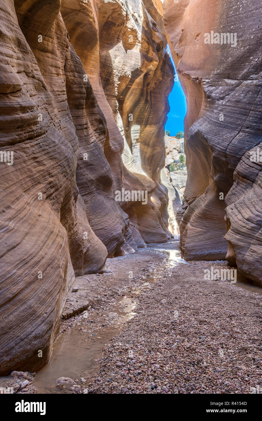 A narrow Slot Canyon, Grand Staircase-Escalante, Bureau of Land Management, Utah - Stock Image