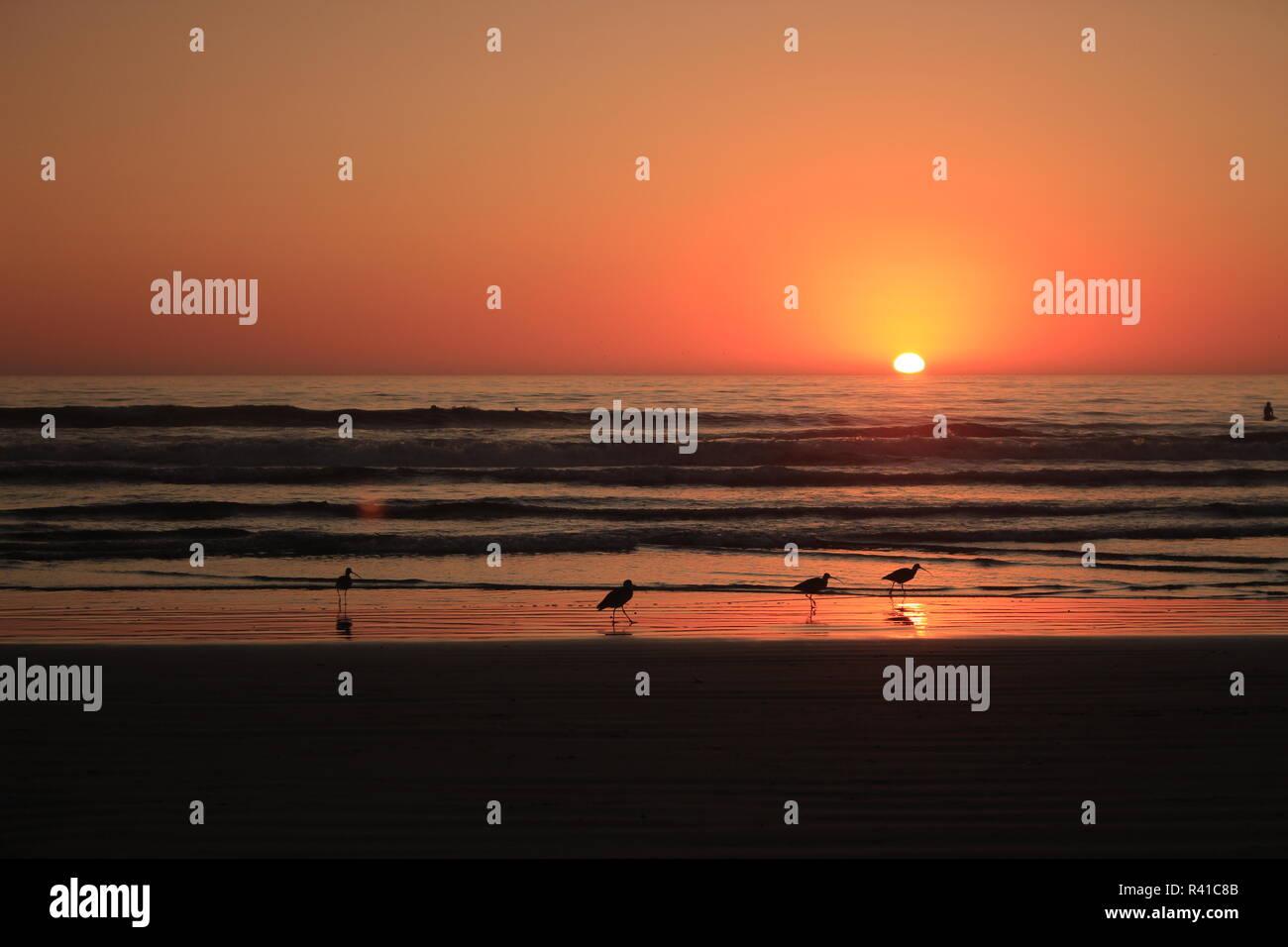 Sonnenuntergang an der Westküste der USA - Stock Image