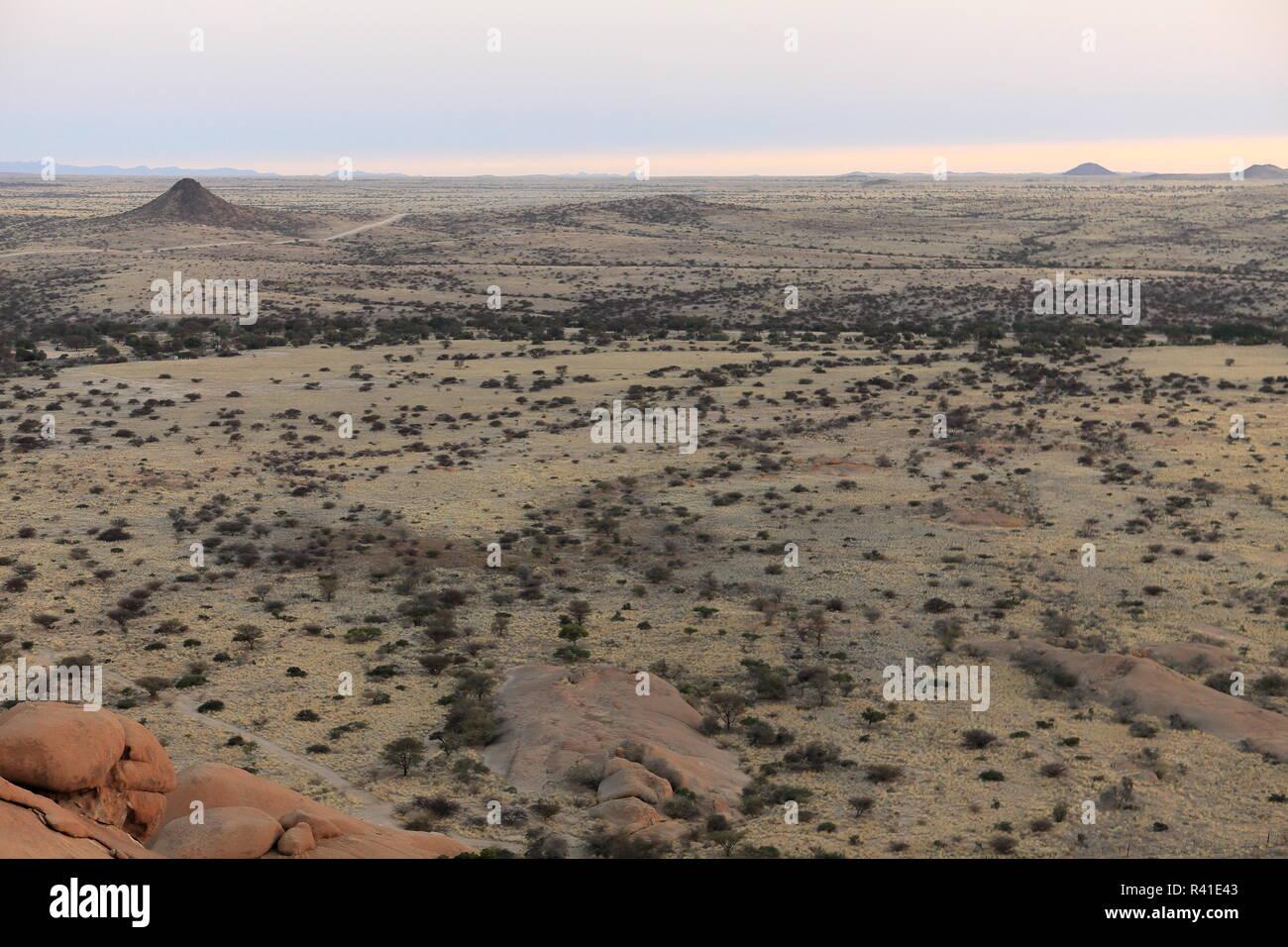 the savannah in namibia Stock Photo
