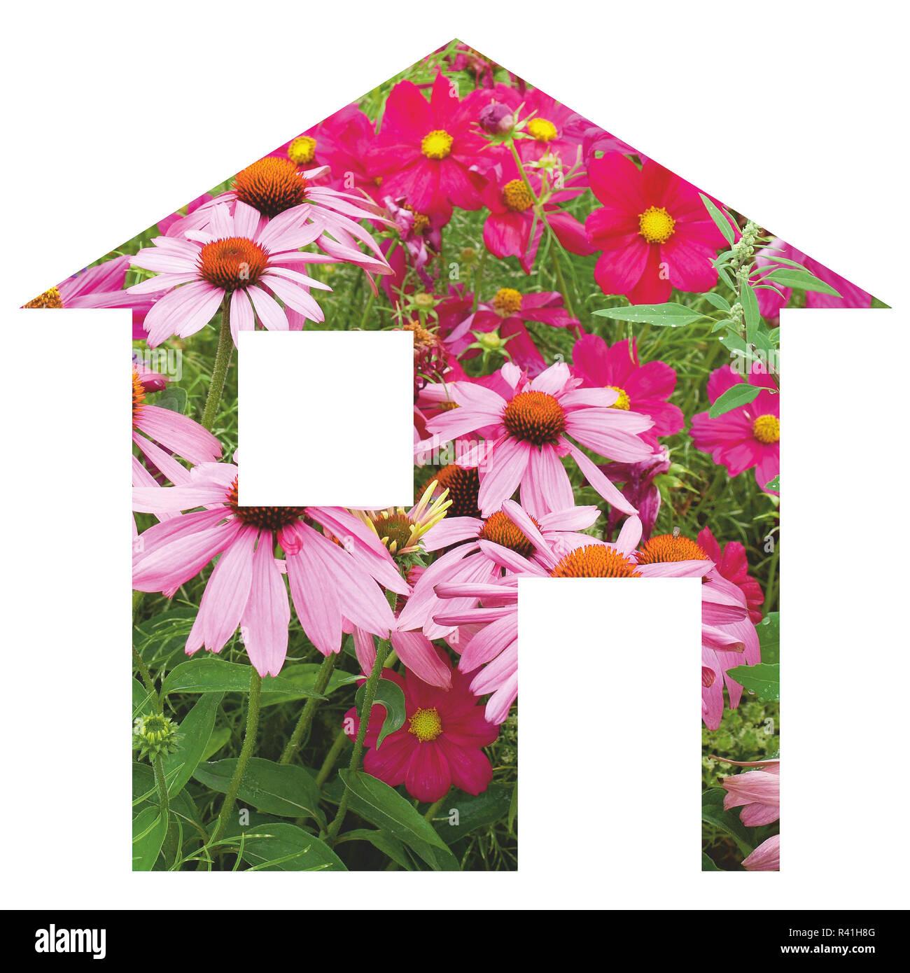 Flower house - Stock Image