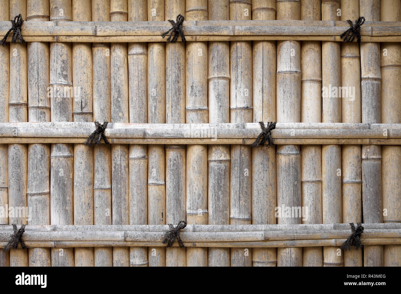 decorative gate in bamboo fence stock image image of.htm japanese bamboo fence stock photos   japanese bamboo fence stock  japanese bamboo fence stock photos