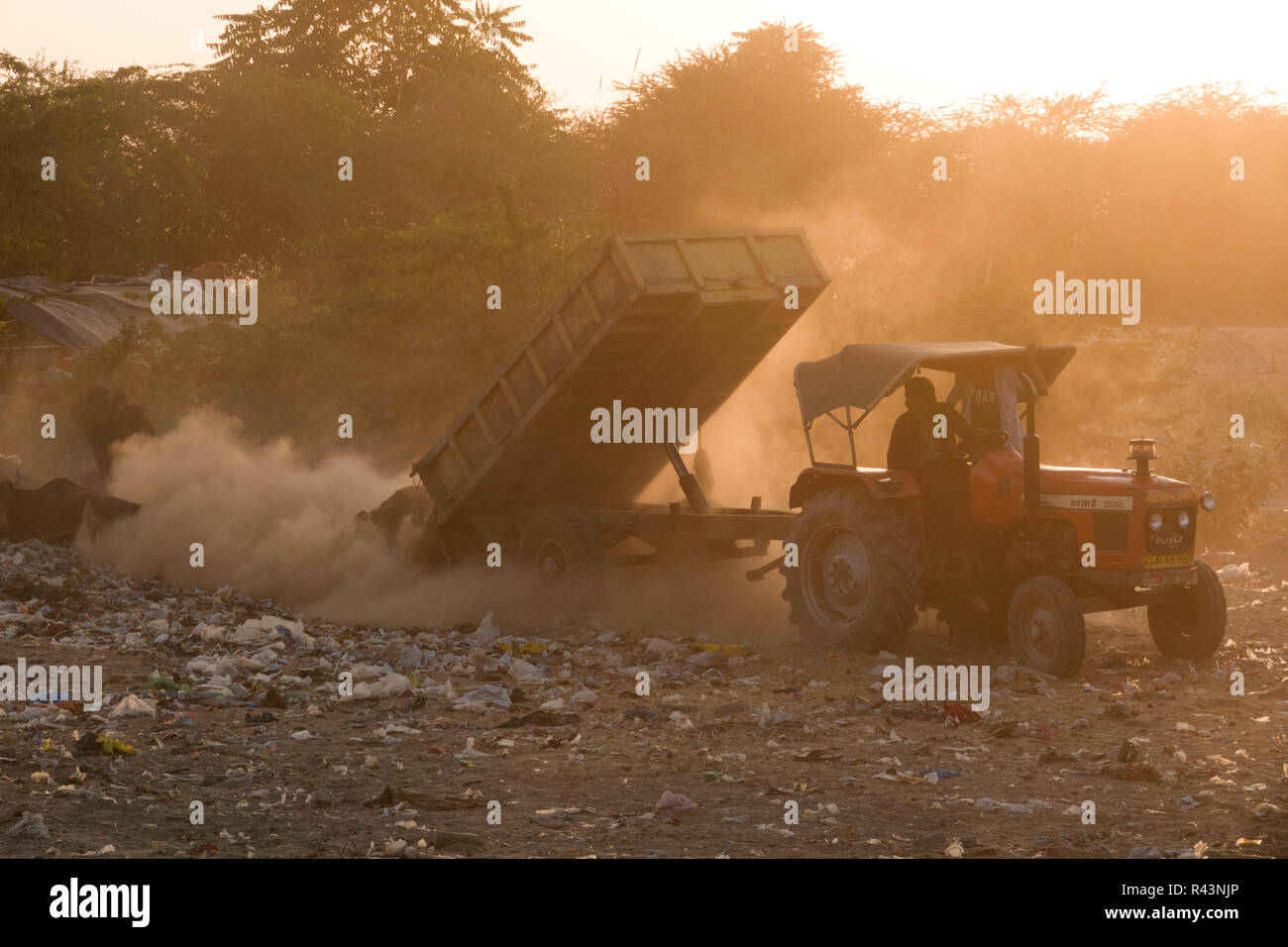 Tractor dumping trash in dumping ground in Pushkar, Rajasthan, India - Stock Image