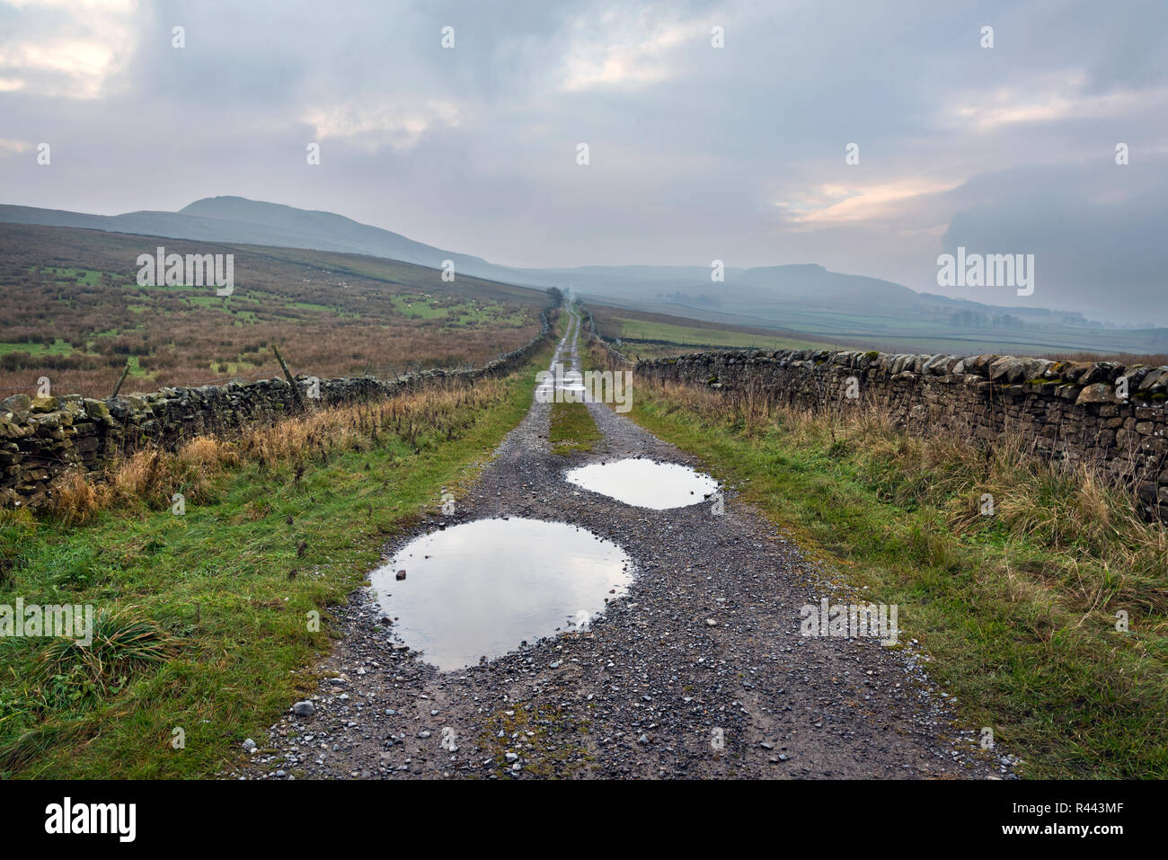 The historic Cam High Road, a Roman road which has also served as a drovers and packhorse route, Bainbridge, Yorkshire Dales National Park, UK Stock Photo