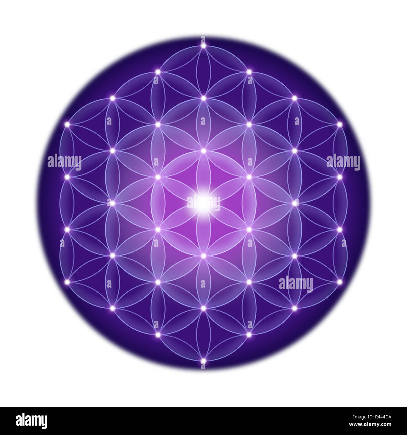 Bright Flower of Life With Stars on White Background - Stock Image