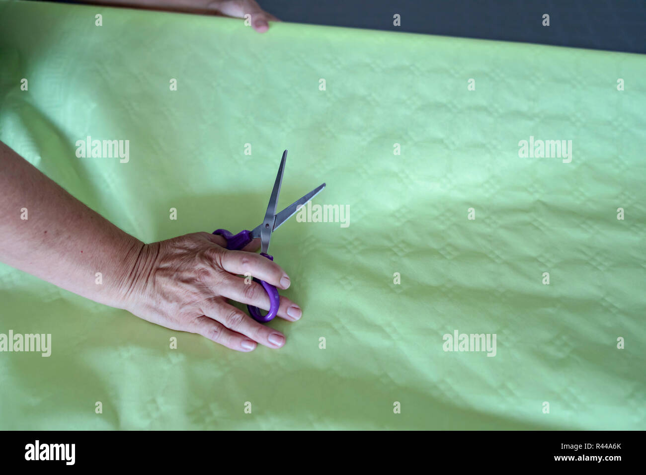Hand of an elderly woman holding a pair of purple scissors on a green gift wrap roll or paper tablecloths getting ready for upcoming festivities. - Stock Image