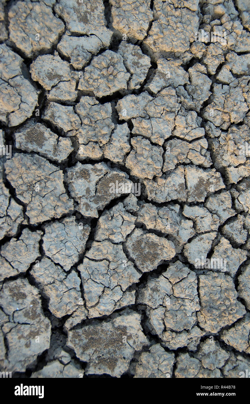 Global warming. Earth cracked because of drought - Stock Image
