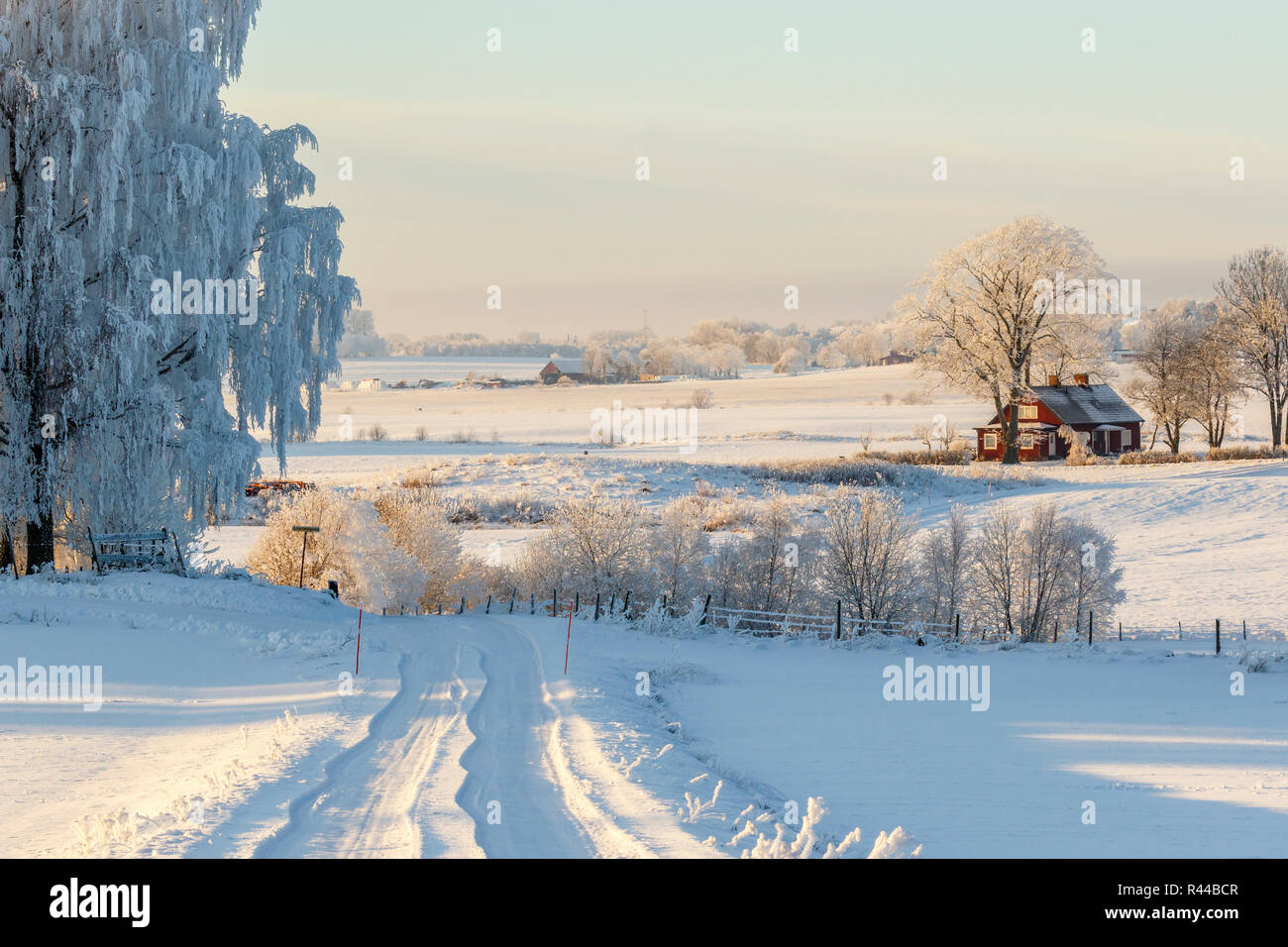 Snowy winter road in a rural landscape - Stock Image