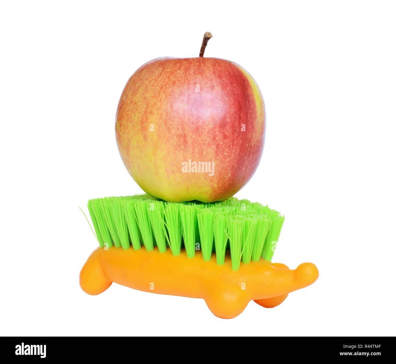 Apple on the hedgehog shaped brush isolated on white - Stock Image