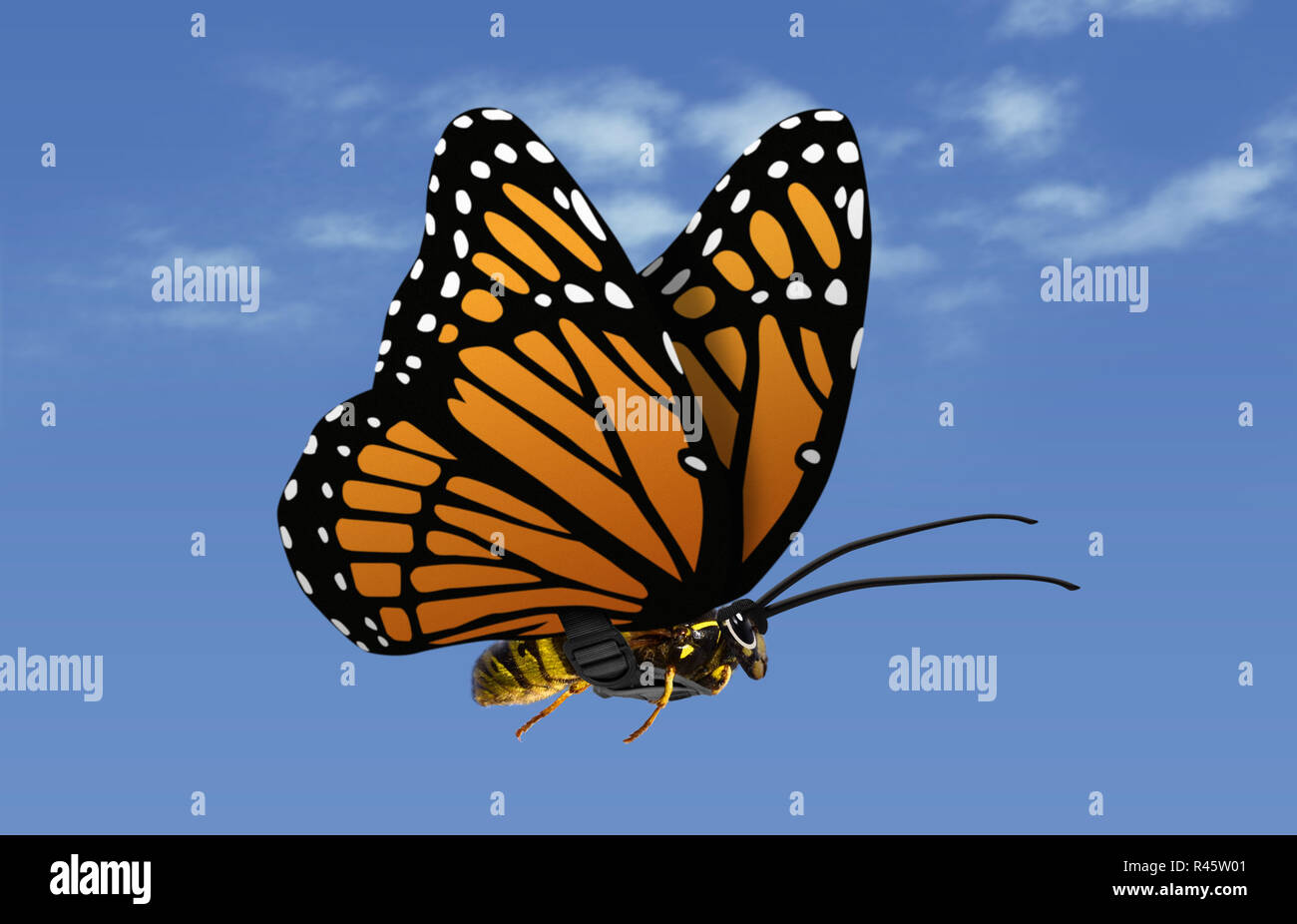 evil wasp disguised as a harmless butterfly - Stock Image