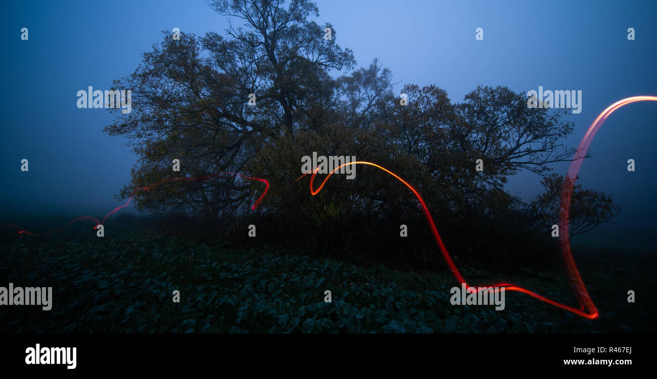 Light Painting with pocket lamp in night landscape. long exposure lights light painting night nature landscape. Light painting at the field - Stock Image