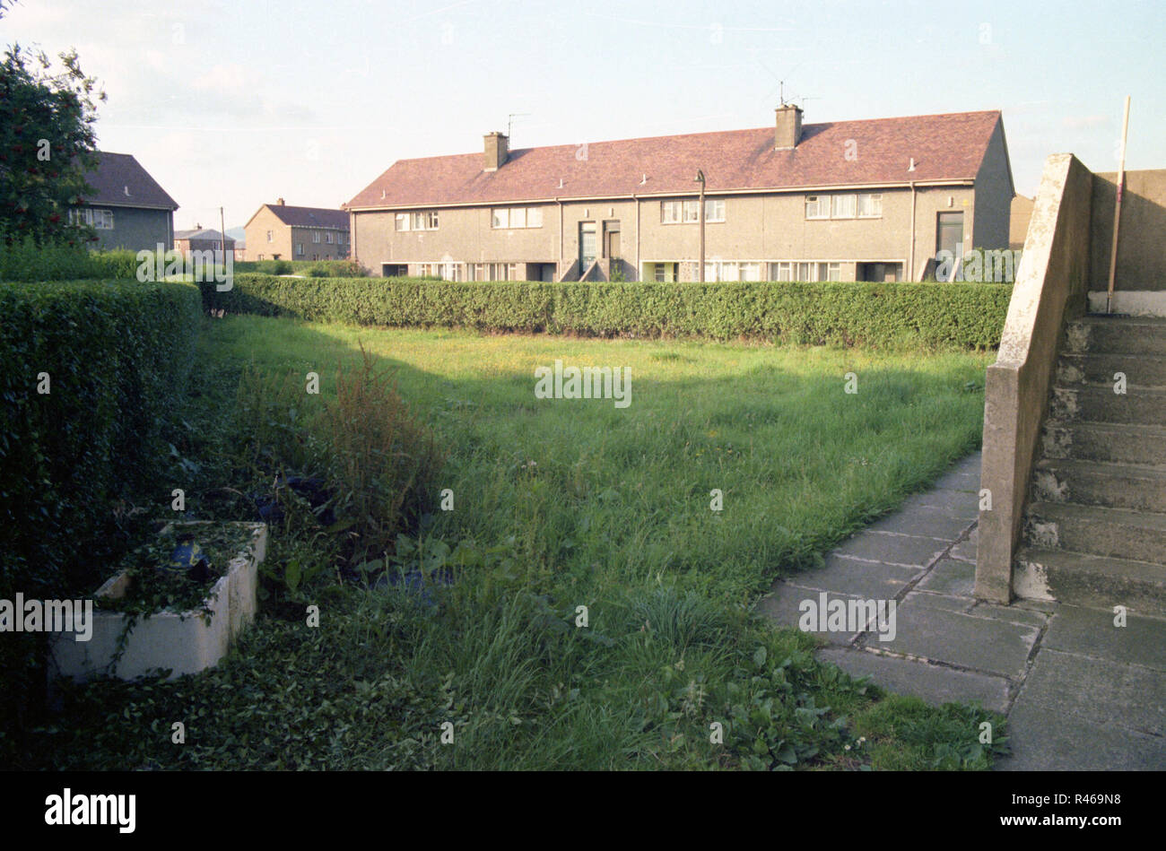 Massive garden belonging to a small duplex house in Clydebank. - Stock Image