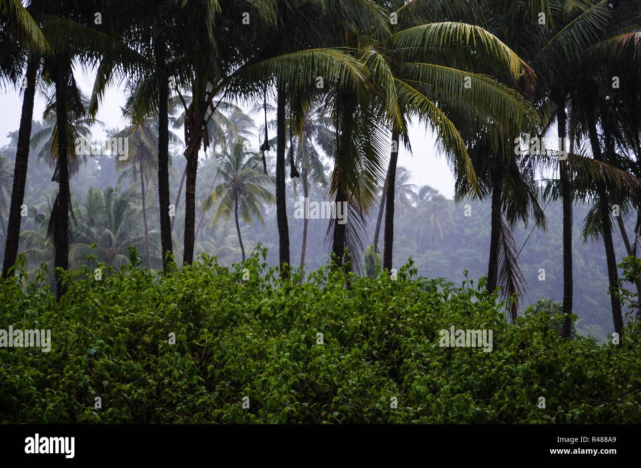 Atauro Island and Dili, East Timor (Timor Leste) - Stock Image