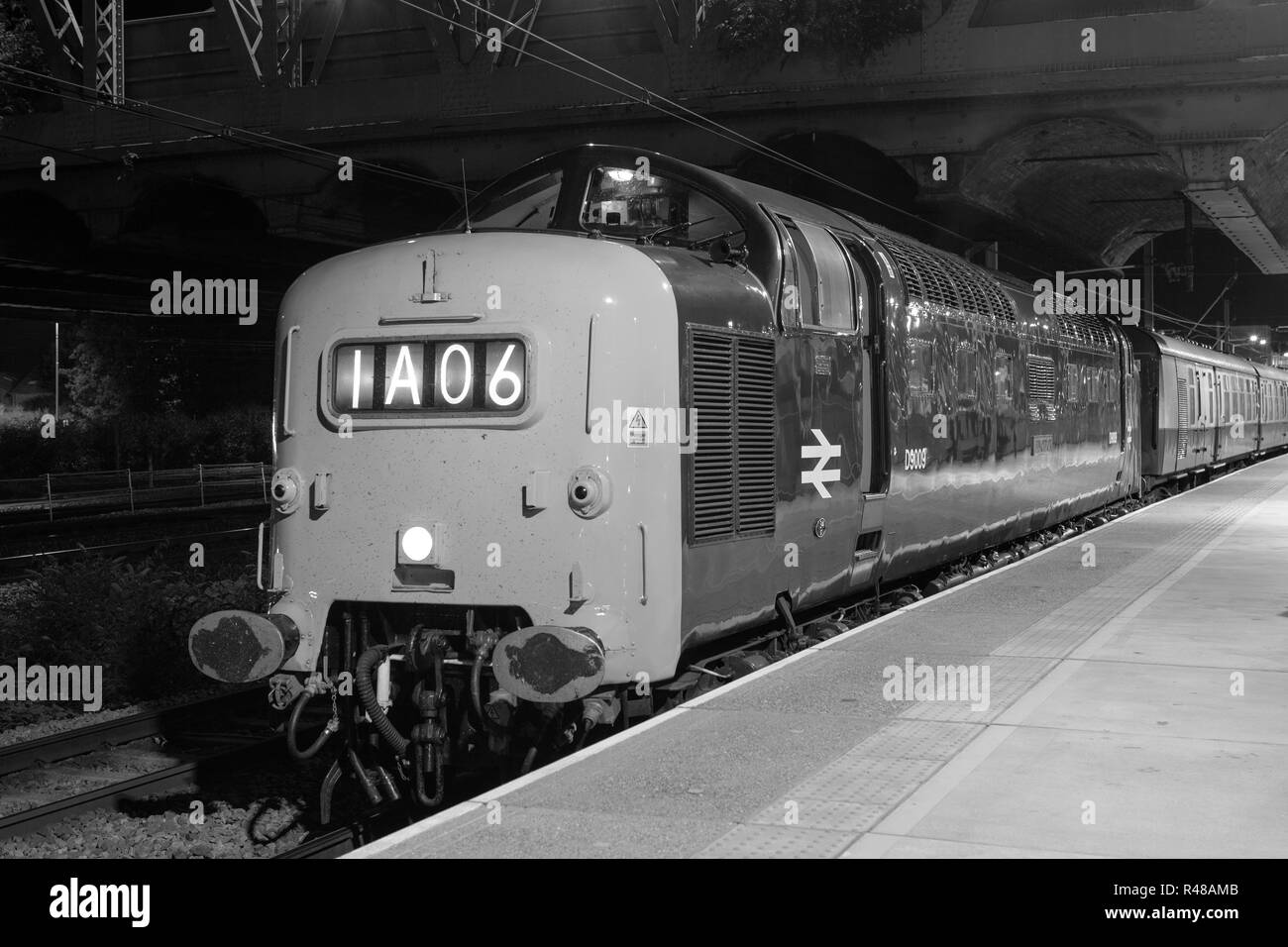 Class 55 Deltic, 9009 Alycidon, at Peterborough Station with The Talisman railtour Stock Photo