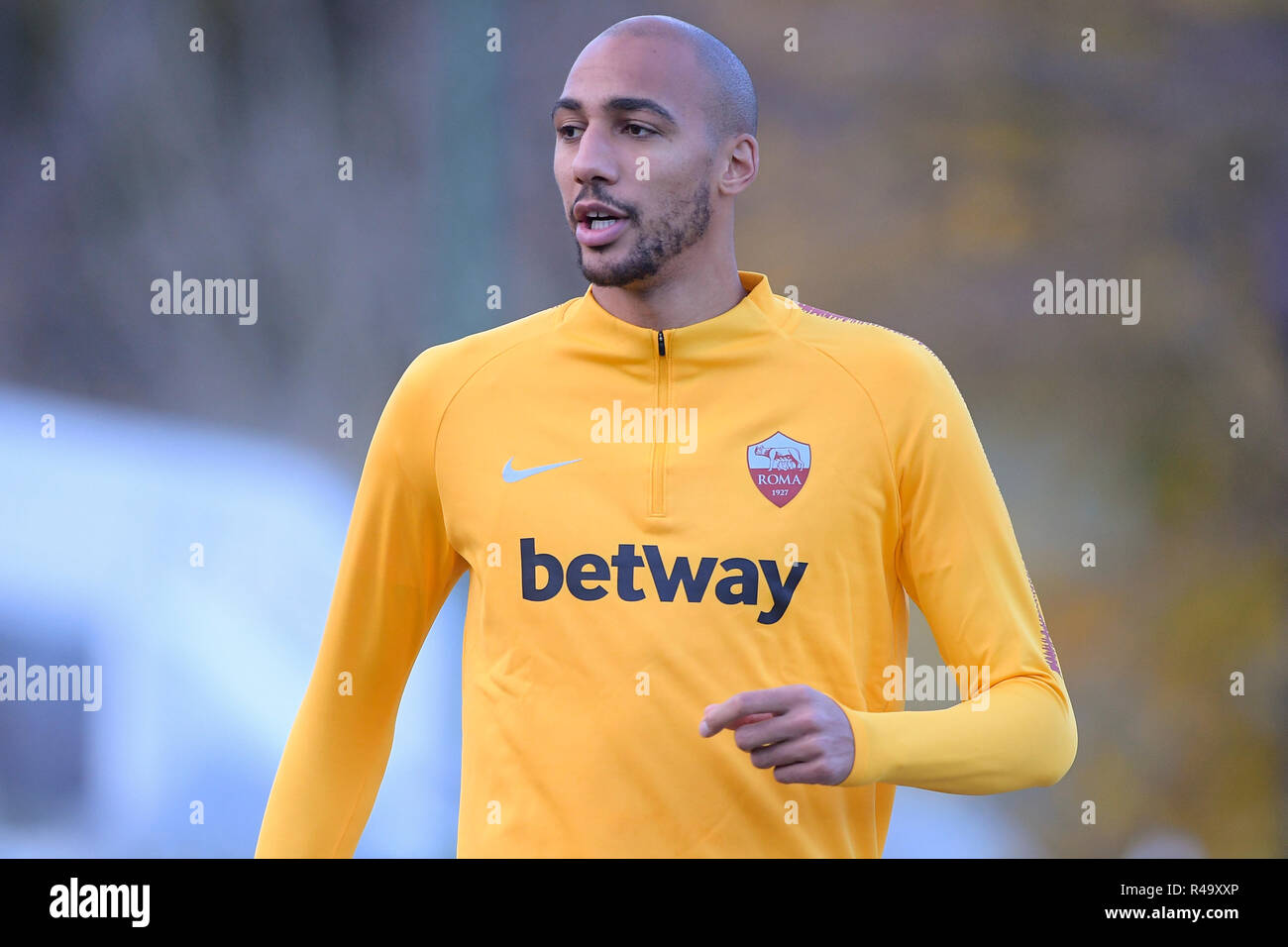 Page 3 - Steven Nzonzi High Resolution Stock Photography and ...