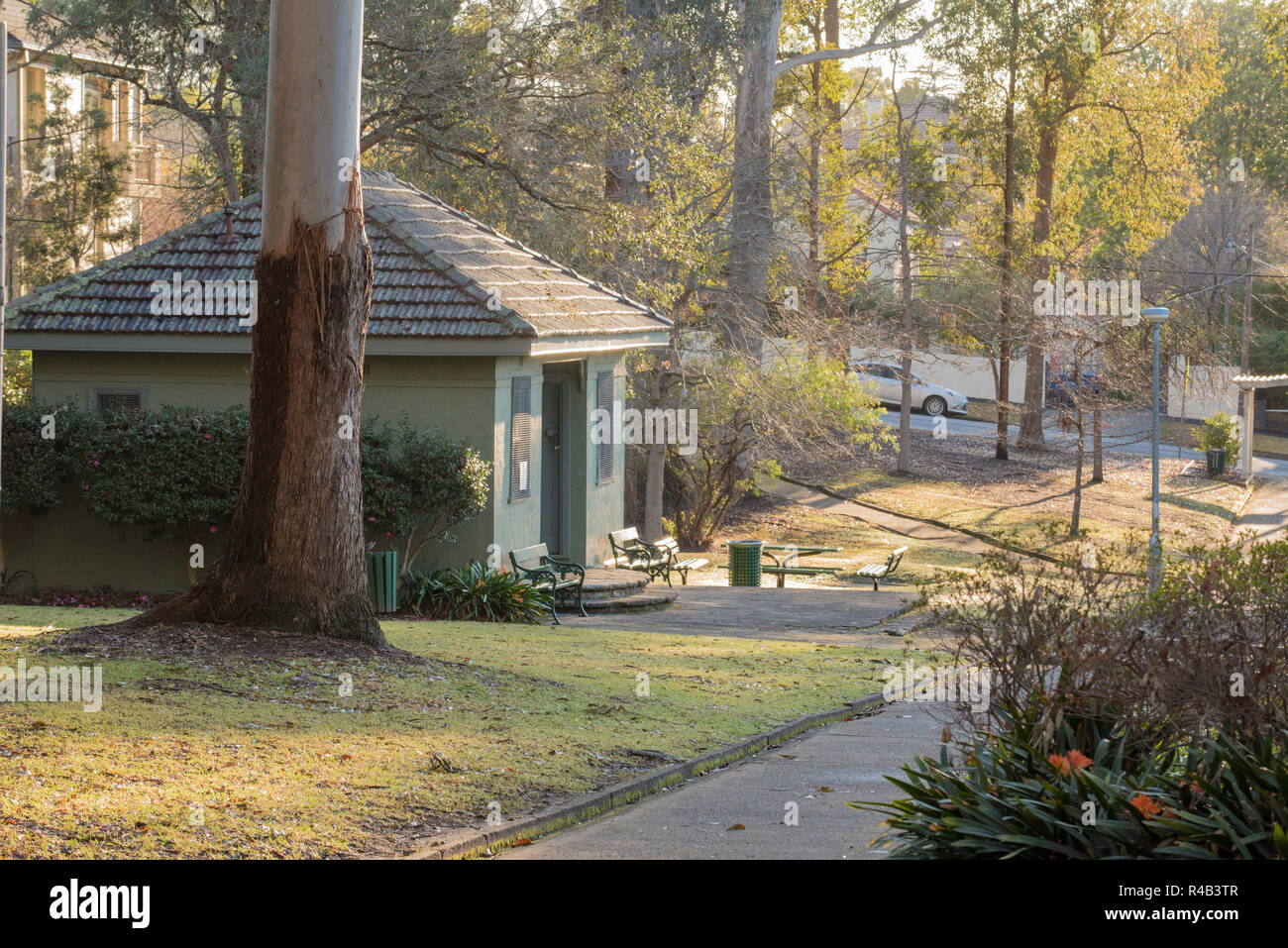 Morning sun filters through the gum trees and washes over the old club house change rooms in Werona Park, Gordon in Sydney Stock Photo