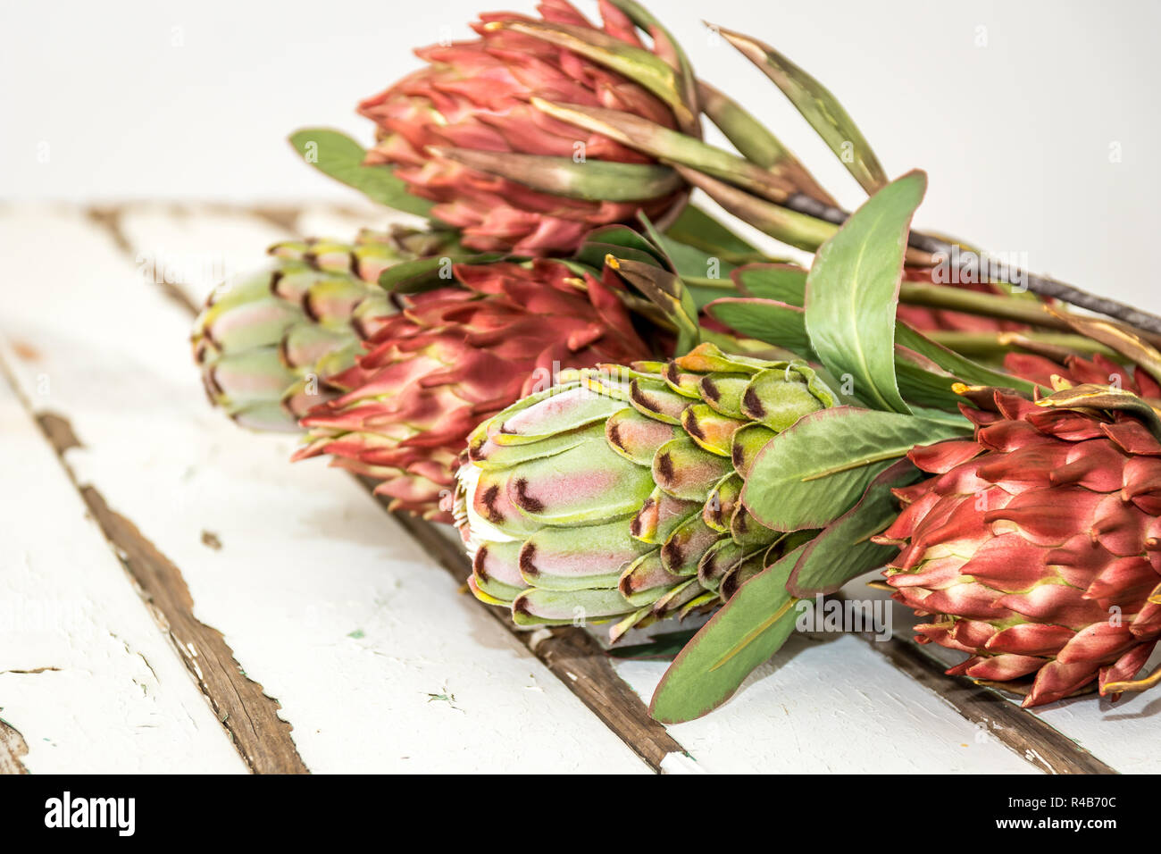 Vintage White Wash Wooden Table With Orange And Green Proteas