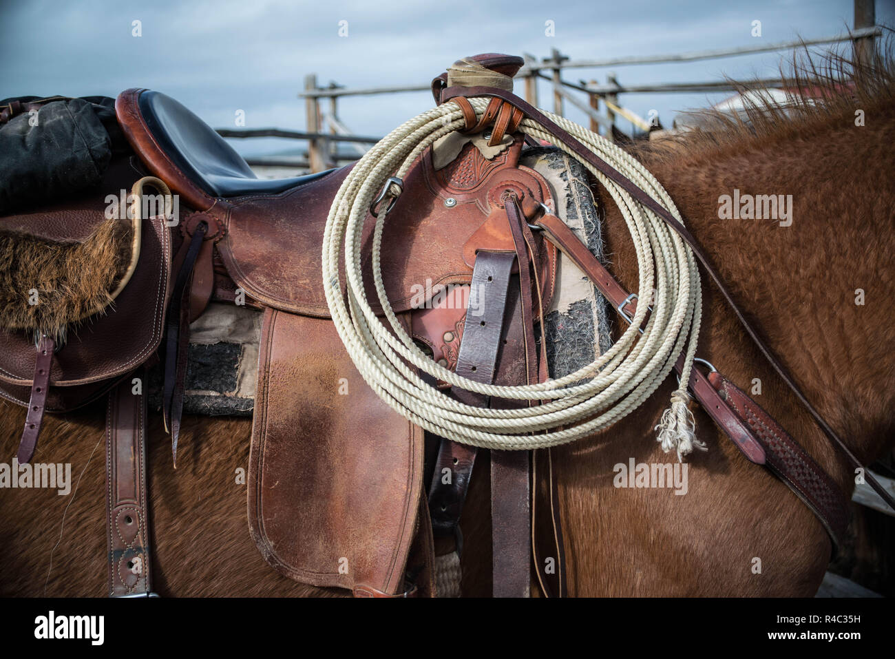 Sorrel horse saddled up with lariat rope and saddle bags ready to ride in wooden corral - Stock Image