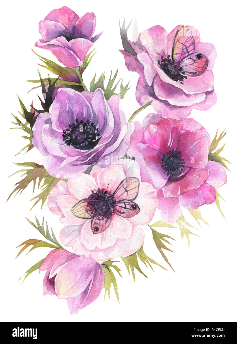 Hand Drawn Watercolor Flowers Tender Bouquet With Anemones And