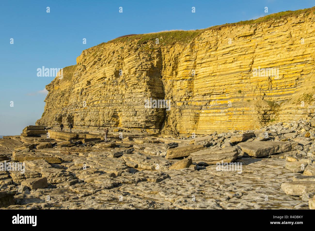Limestone Cliffs at Dunraven Bay Southerndown Vale of Glamorgan - Stock Image