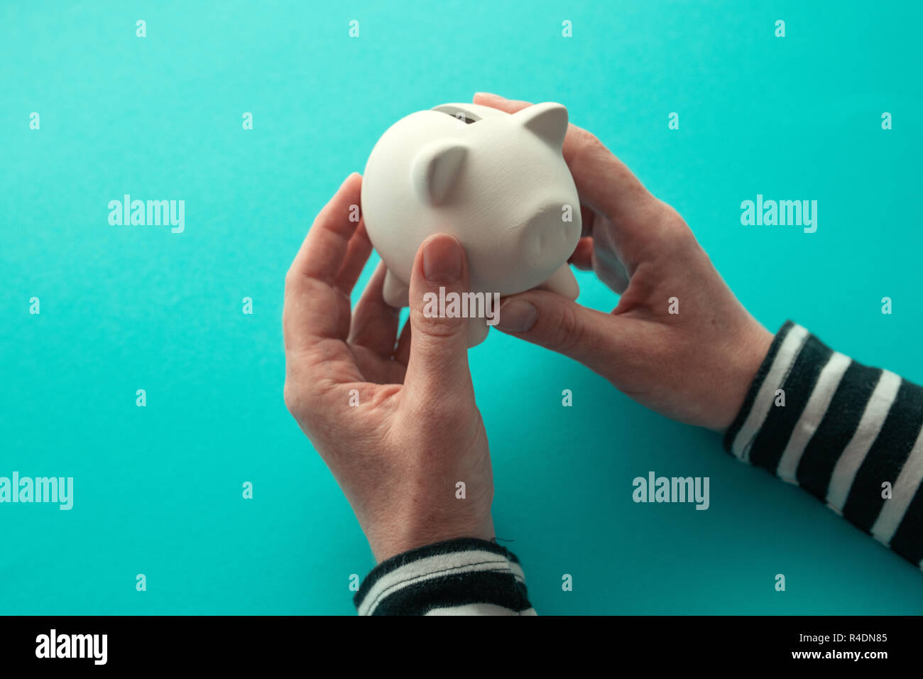 Female hands and piggy coin bank for money savings concept Stock Photo