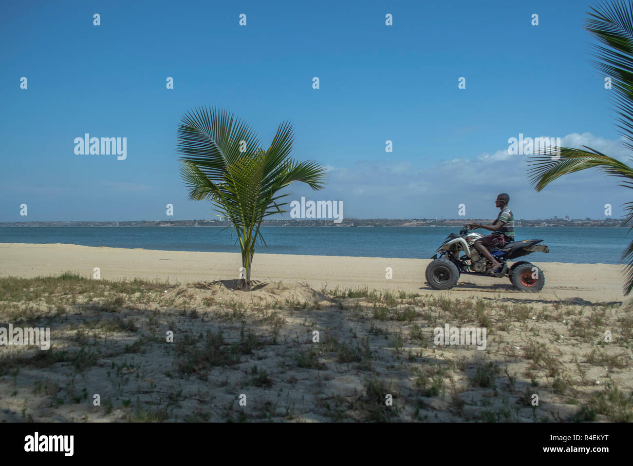 Luanda/Angola - 11 11 2018: View of beach with palm tree and man riding quad bike, ocean and Luanda as background, Mussulo island, Angola - Stock Image