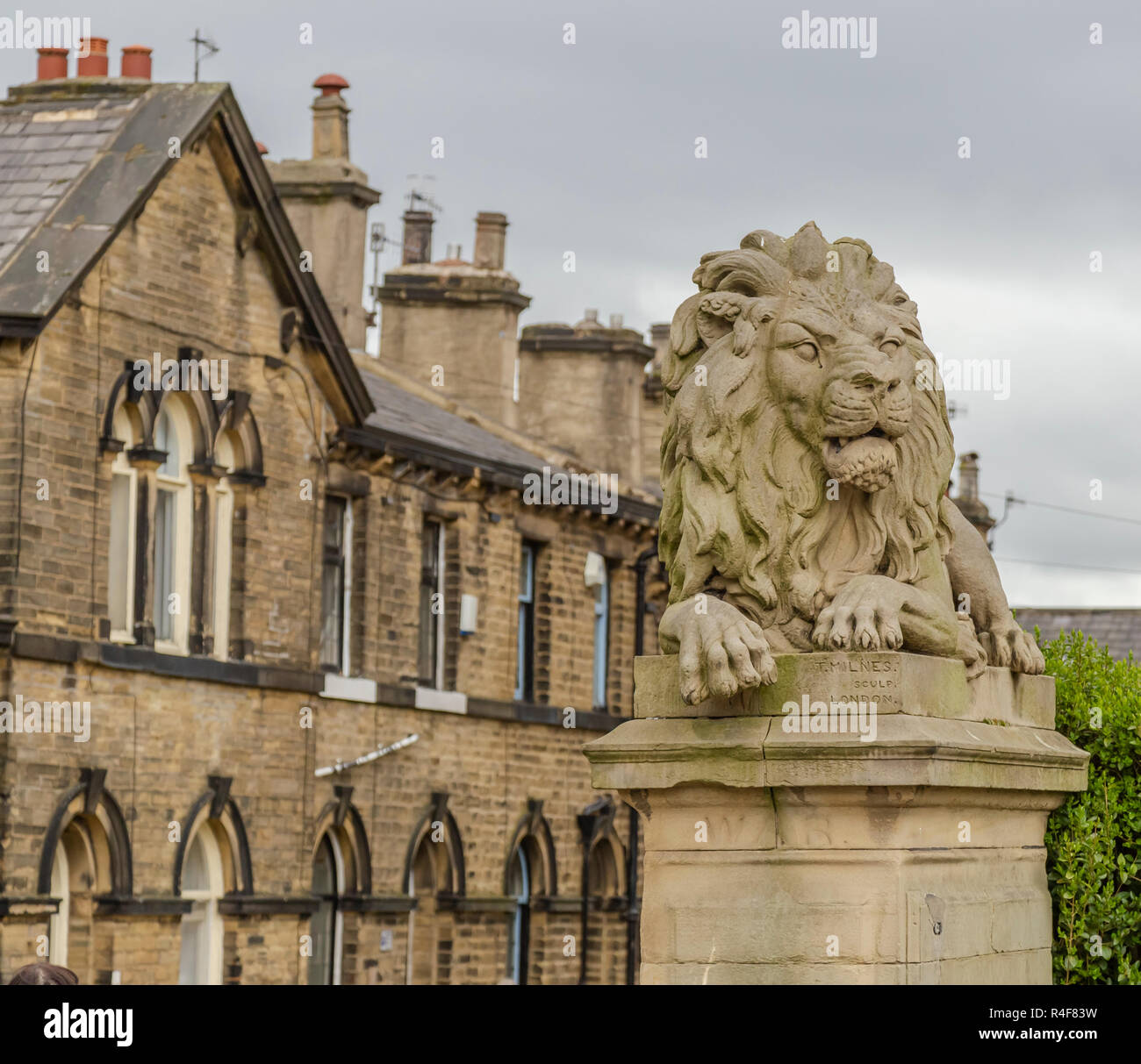 One of the Saltaire stone lions by Sculpture Thomas Milne. This one is named 'War'. - Stock Image