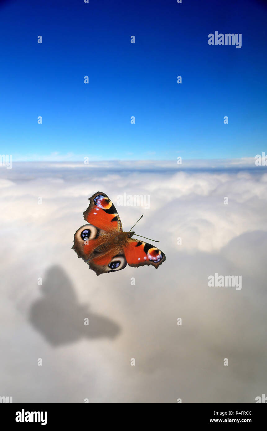 manipulated image of a red  peacock butterfly flying above the clouds. - Stock Image