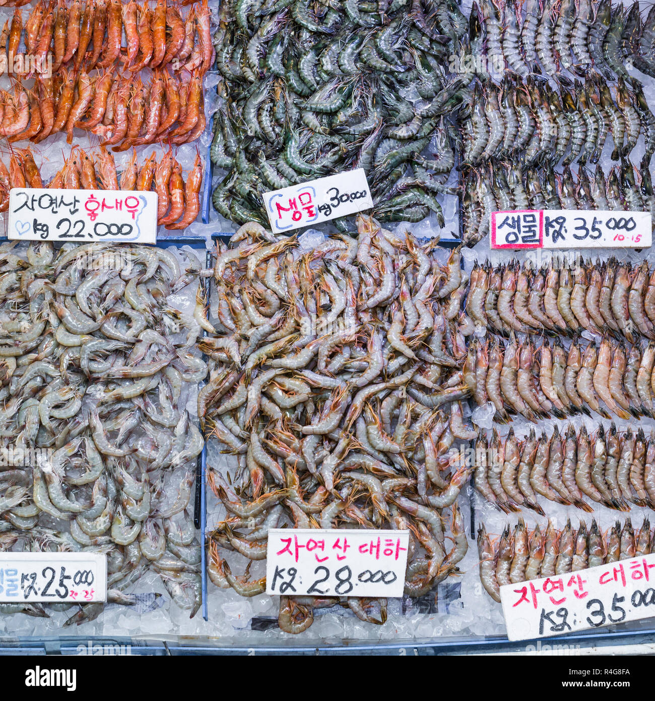 Noryangjin Fisheries Wholesale Market , Expansive wholesale & retail market with stalls offering hundreds of types of fish & seafood. Stock Photo