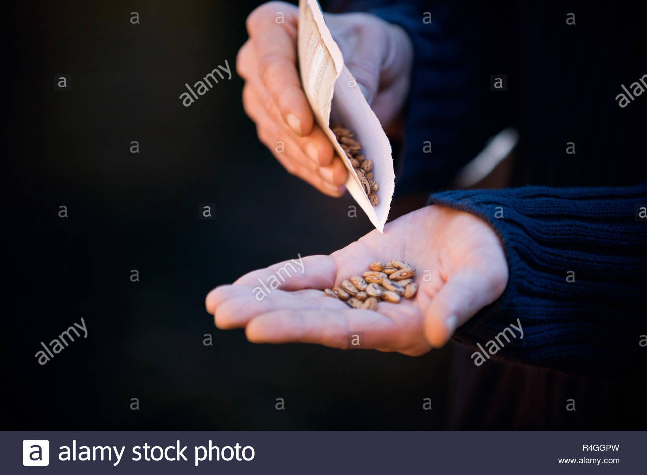 A man pouring seeds into his hand - Stock Image