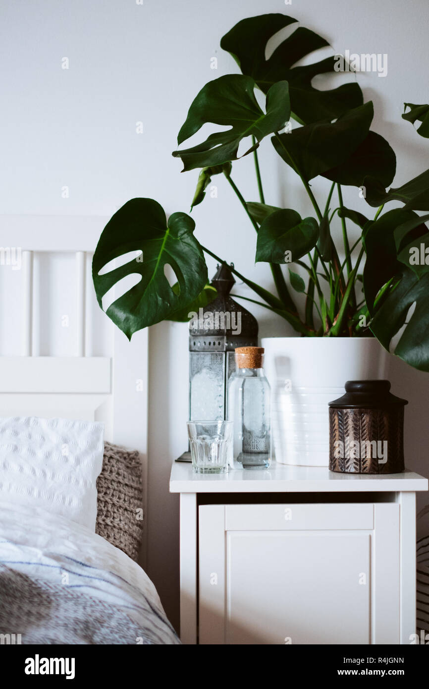 A Tranquil Hotel Style Nightstand And Bed With Beautiful Layered Bedding And A Large Monstera Houseplant Stock Photo Alamy