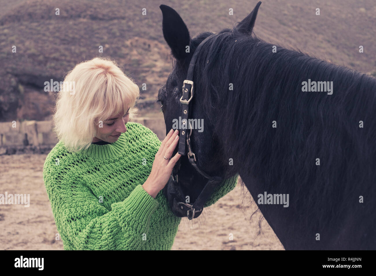 Young Woman Beautiful Black Stallion High Resolution Stock Photography And Images Alamy