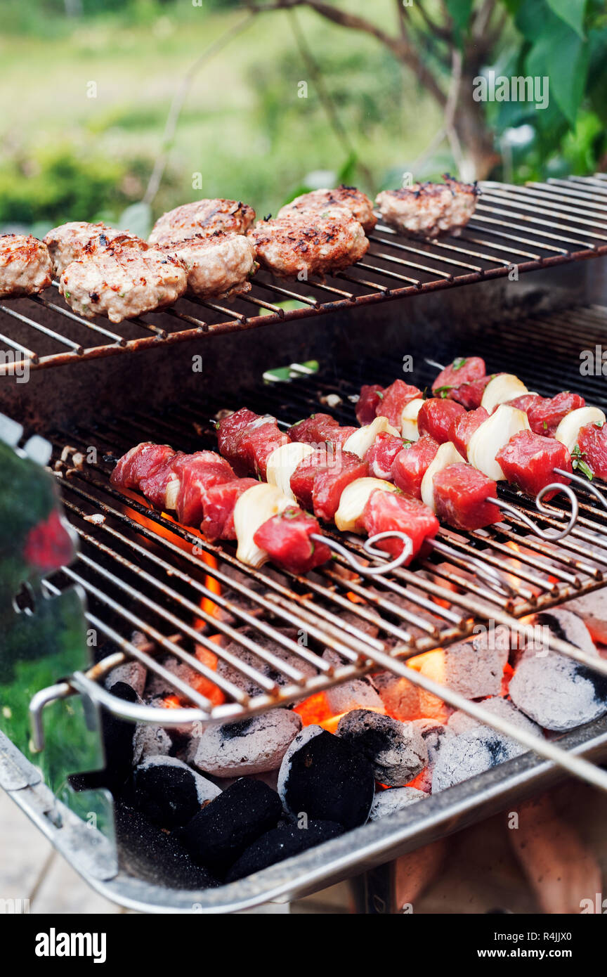 Meat and skewers on a barbeque grill Stock Photo: 226603384