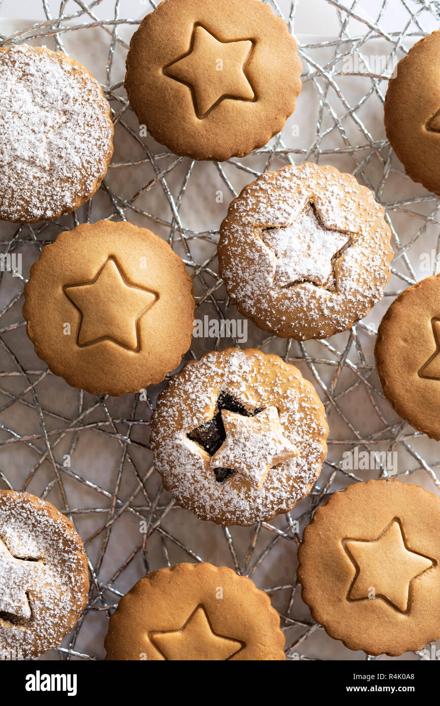 Small gingerbread fruit mince tarts dusted with icing sugar. - Stock Image