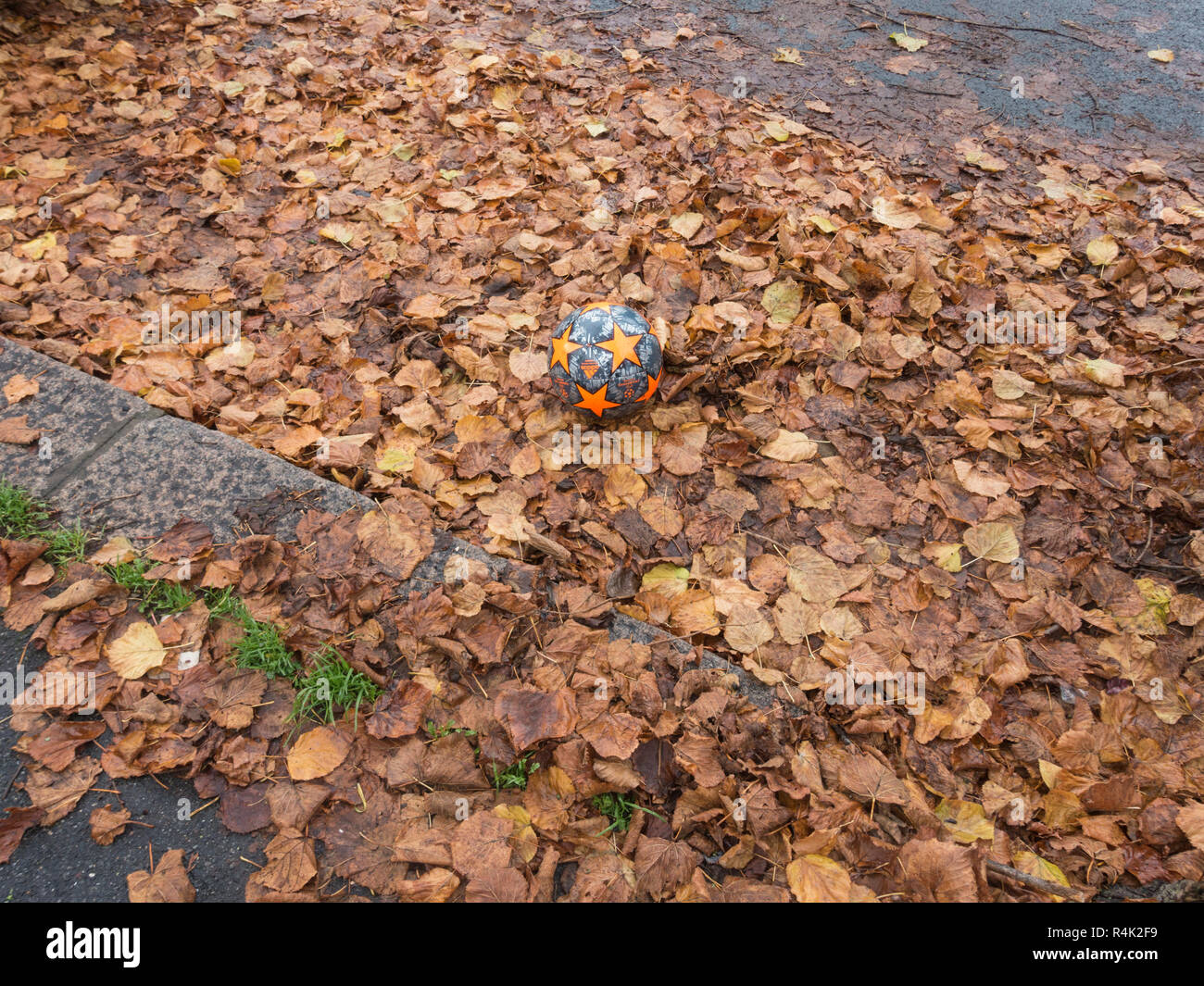 A ball in some leaves Stock Photo