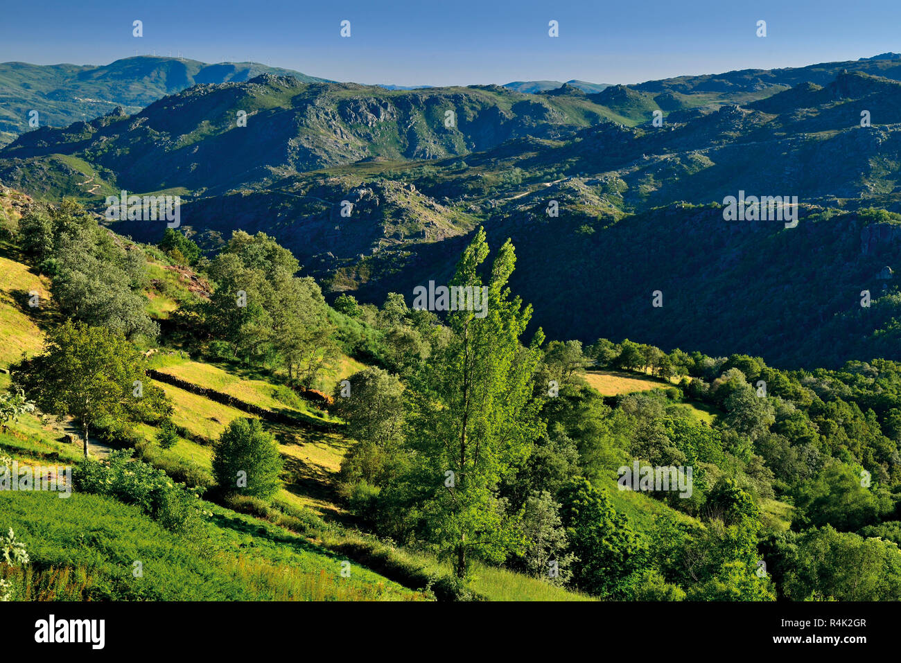 View of a green mountain landscape - Stock Image