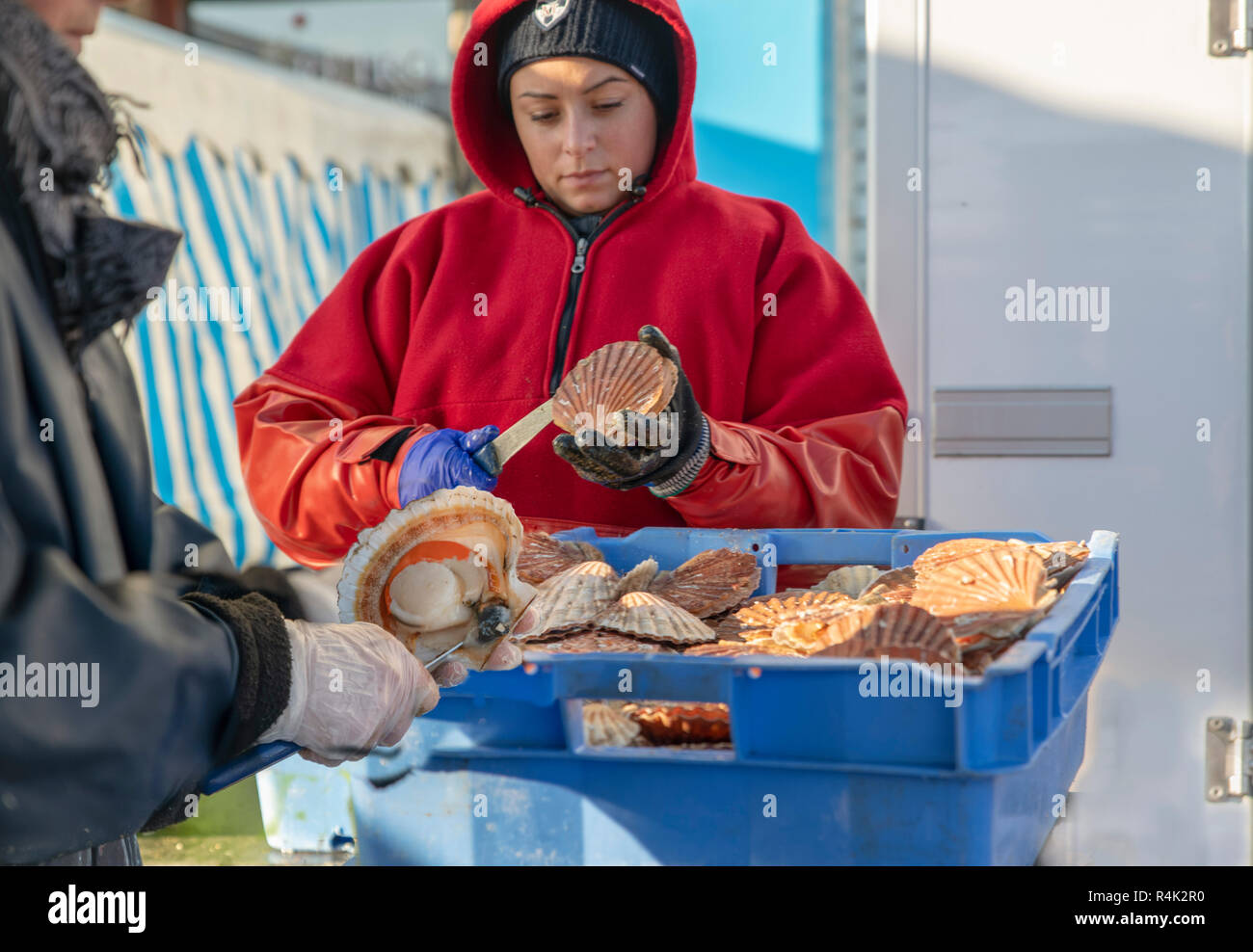 DIEPPE, FRANCE - NOVEMBER 17, 2018: Women open and clean scallops for sale at the Fair of Herring and scallop shell. - Stock Image