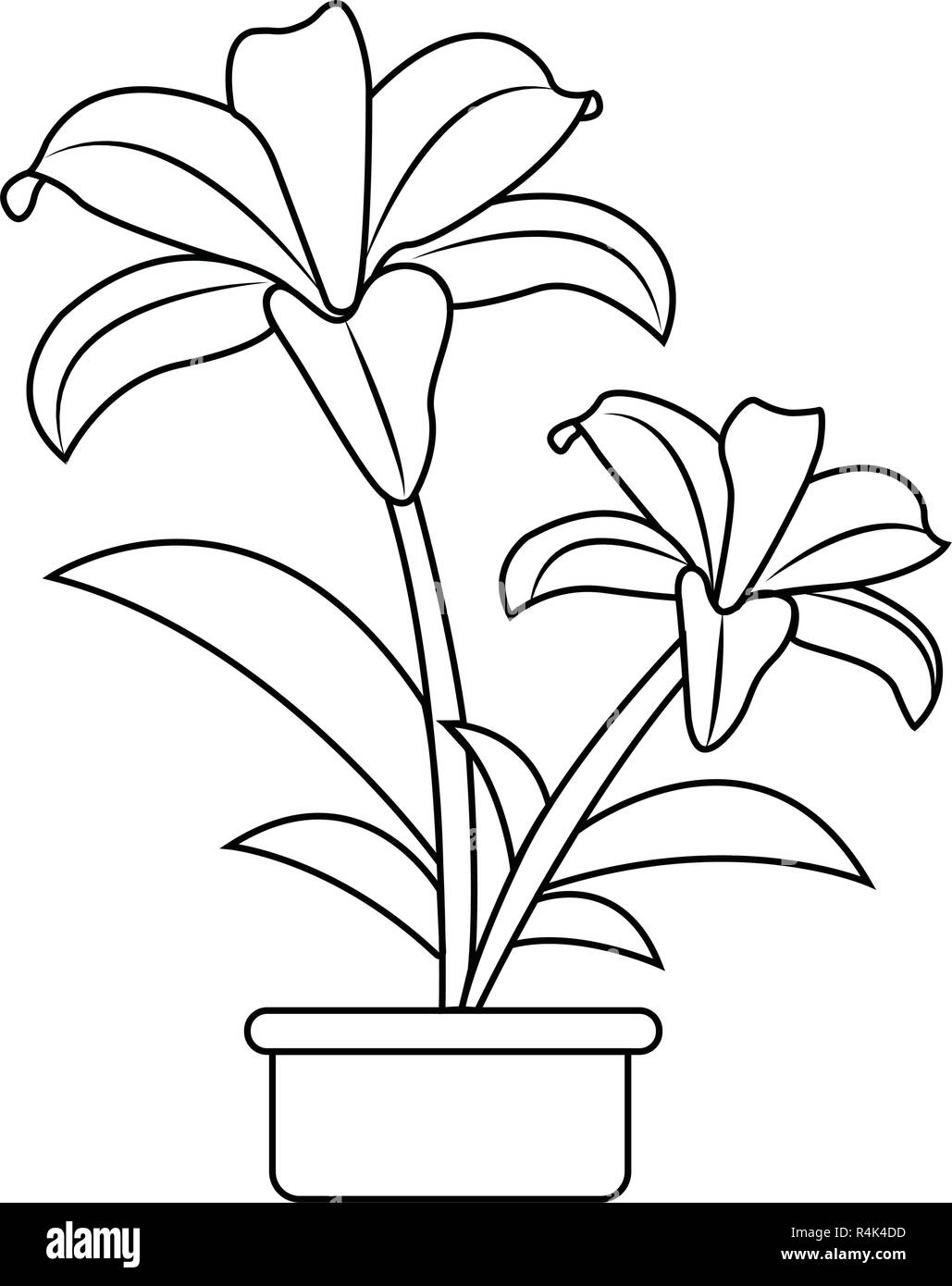 Cute Drawing Plant Stock Vector Image Art Alamy