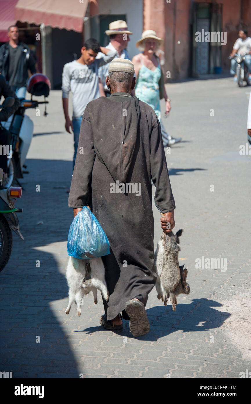 18-04-11. Marrakech, Morocco.  A man in traditional dress walking, carrying dead rabbits for sale. Photo © Simon Grosset / Q Photography - Stock Image