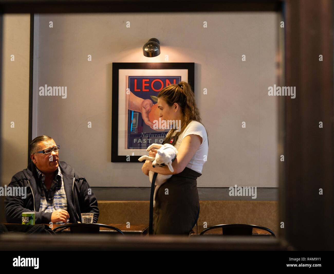Old man chatting to waitress holding a small dog, Leon restaurant, Brighton, West Sussex, UK - Stock Image