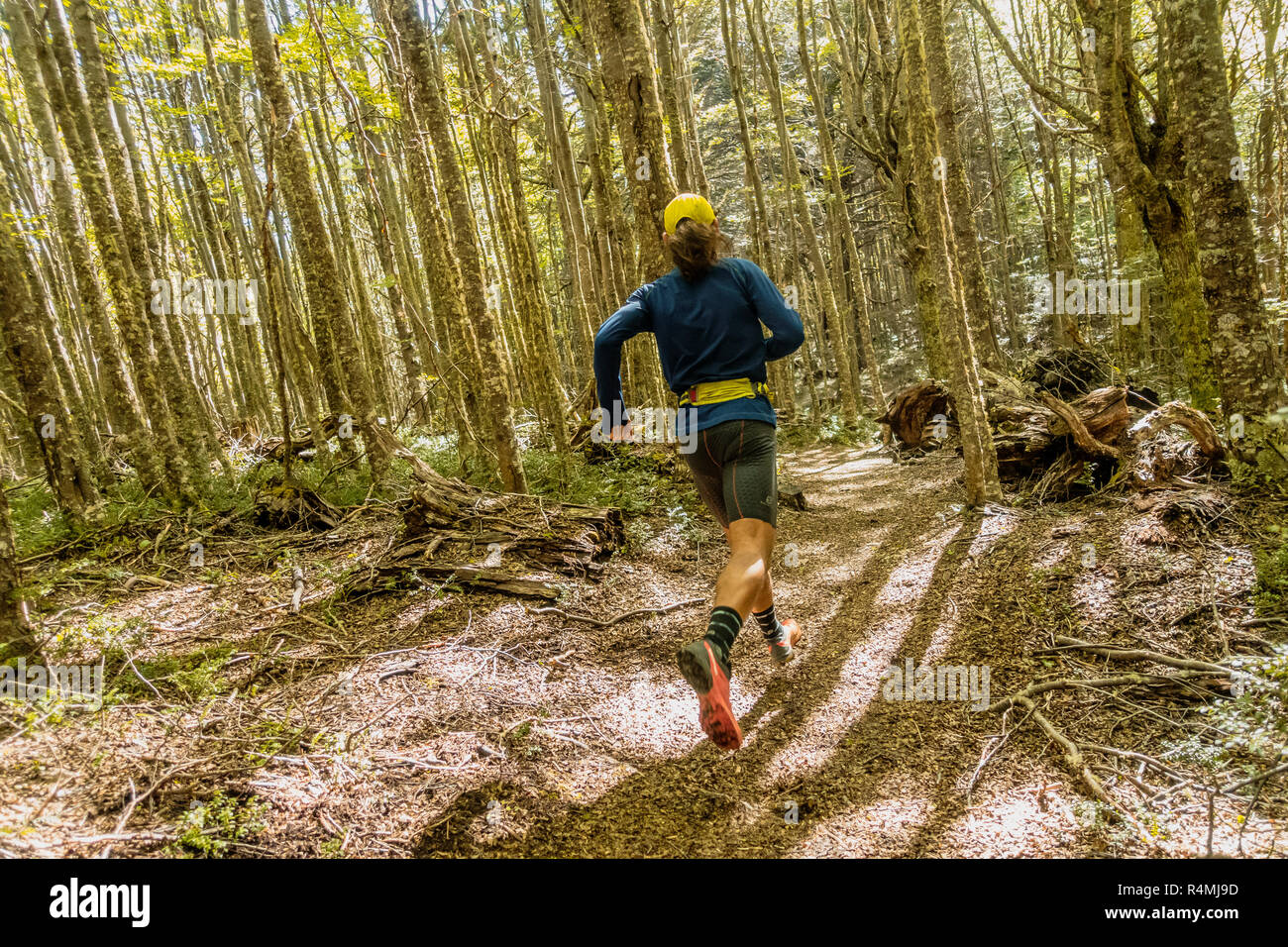 Athlete running on a trail through Coyhaique National Reserve in Aysen Patagonia, Chile. - Stock Image